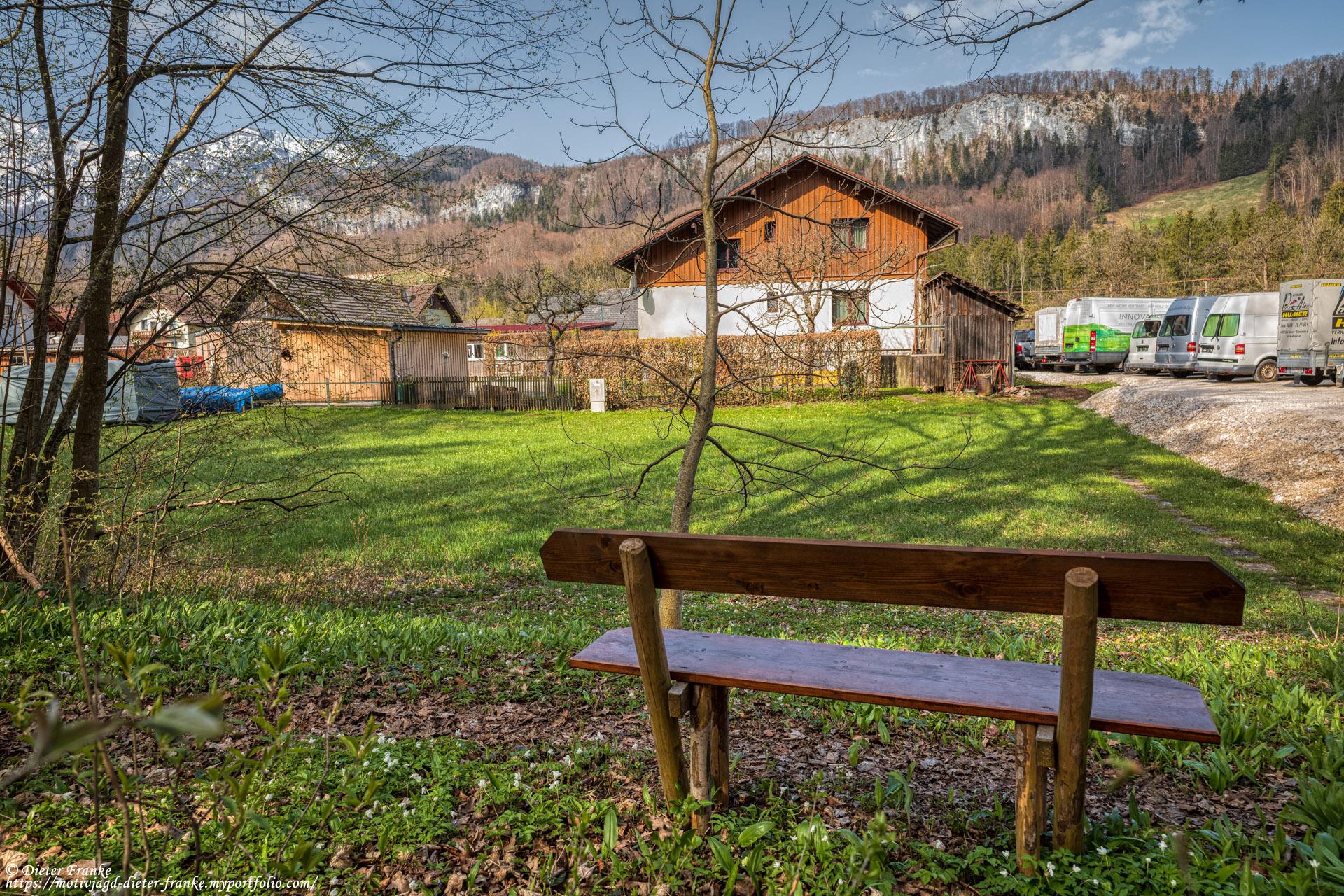 Bankerl 19 - Eichenwald
