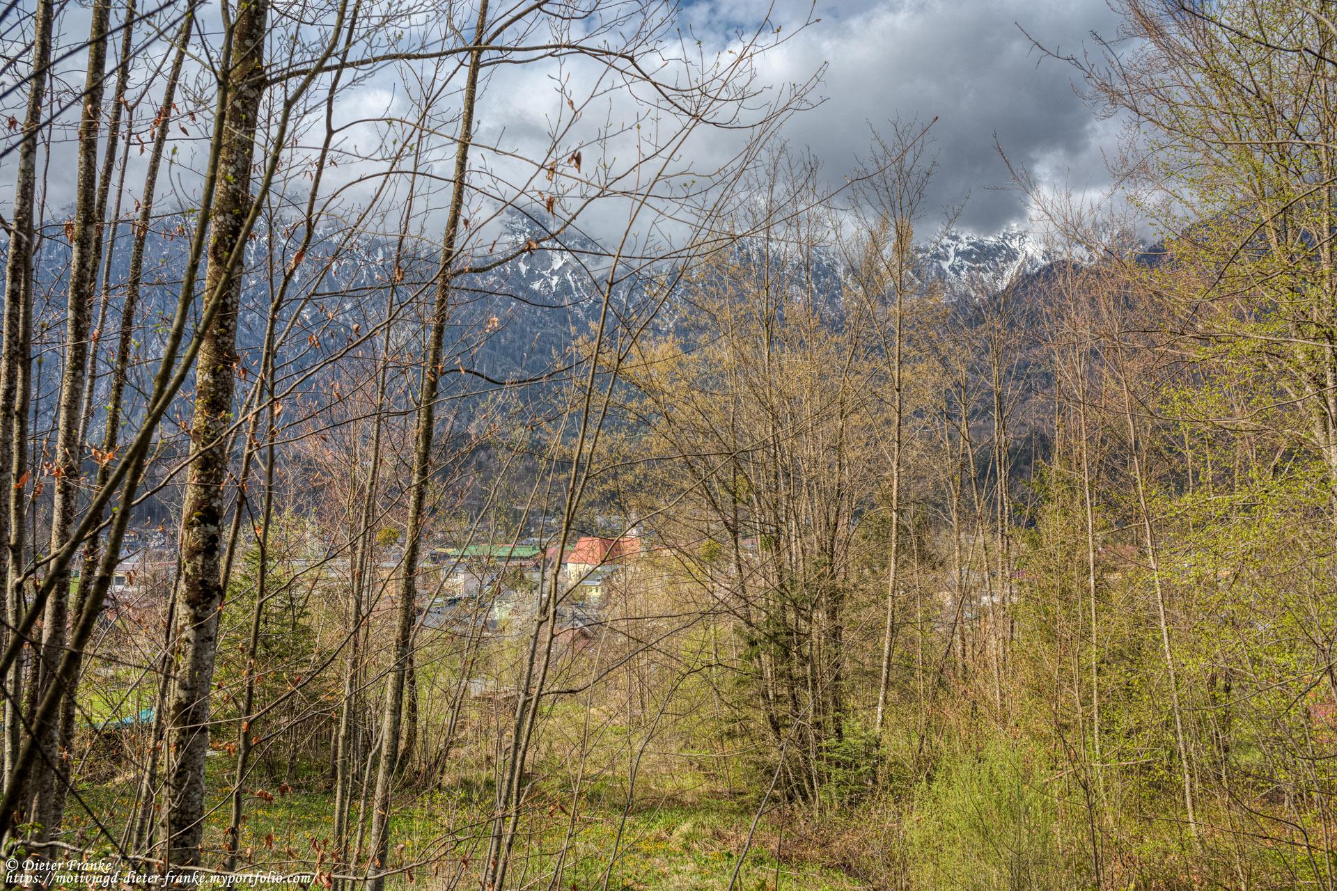 Bankerl 6 - Schötzenwaldweg