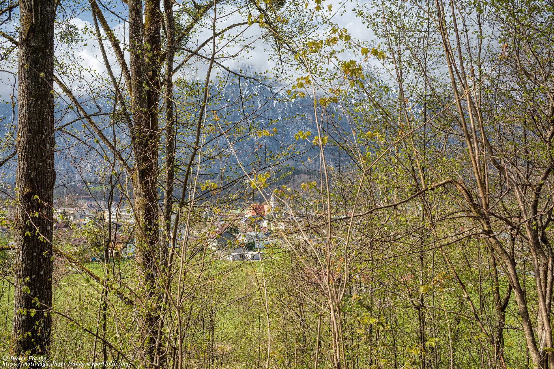 Bankerl 8 - Schötzenwaldweg